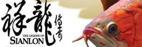 绵阳水族批发市场 绵阳水族馆 绵阳龙鱼